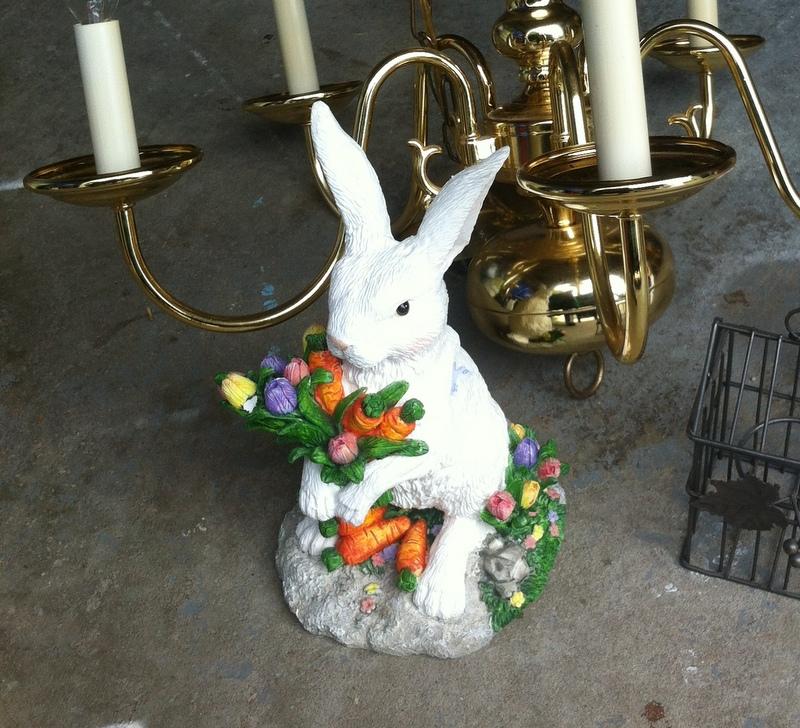 garden rabbit before