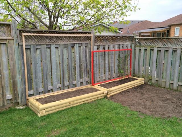 DIY Garden Beds with trellis - northstory.ca