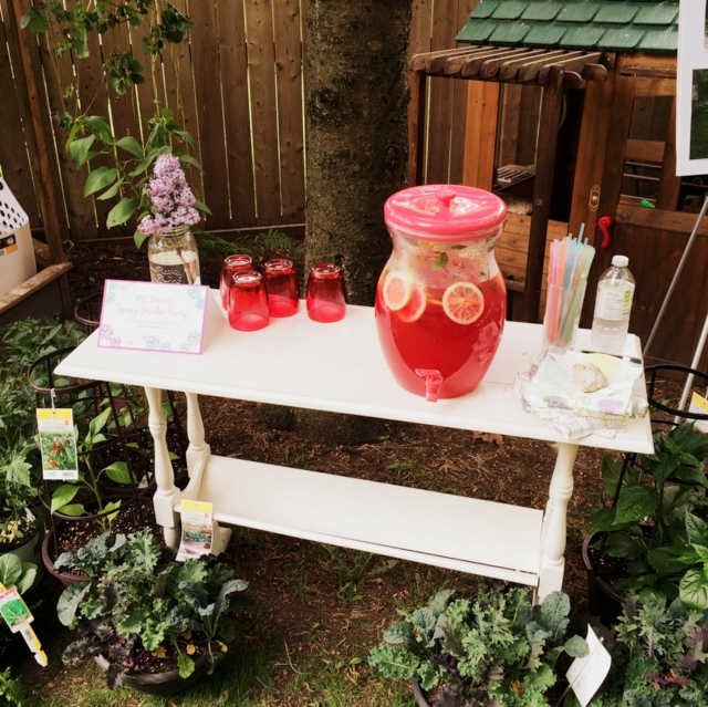 Refreshments at the PC Garden Party - northstory.ca
