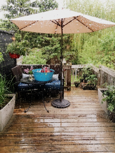 The rain came just in time - northstory.ca