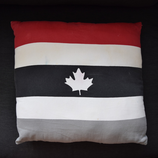 Canadiana Pillow from Superstore - northstory.ca