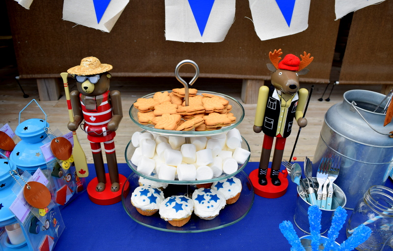 Camping Birthday Party Tablescape - northstory.ca