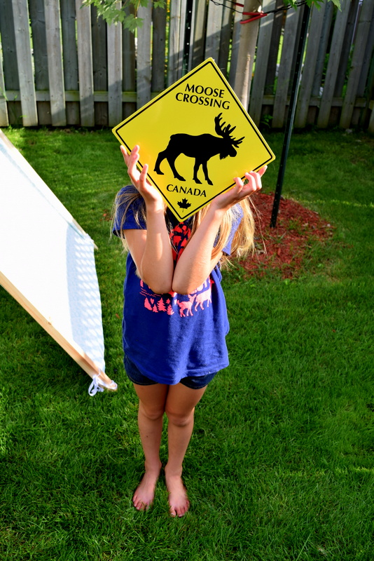 Moose Crossing sign - northstory.ca