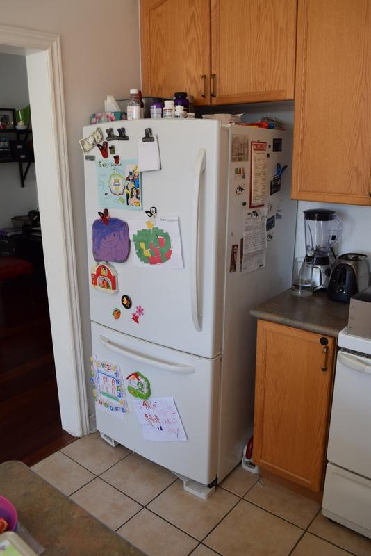 Old fridge Before (1)