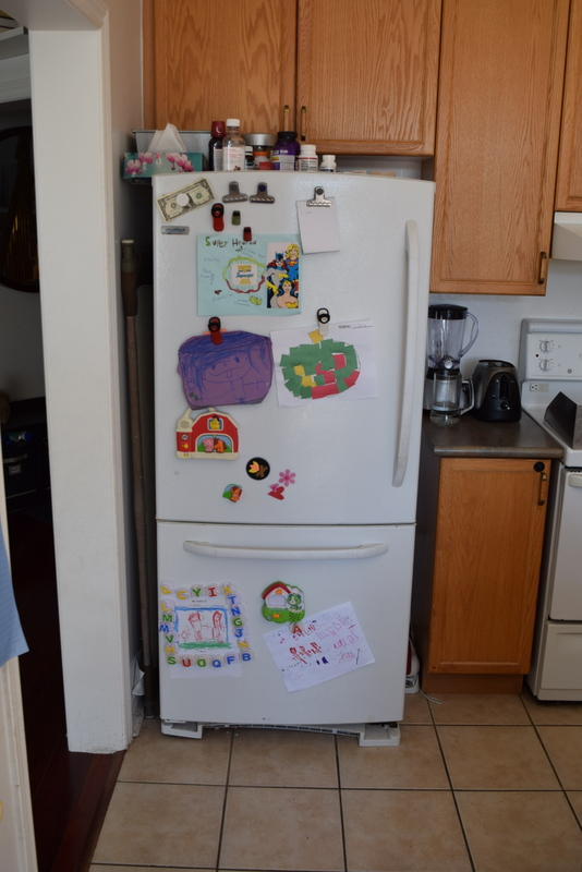 Old fridge Before (9)