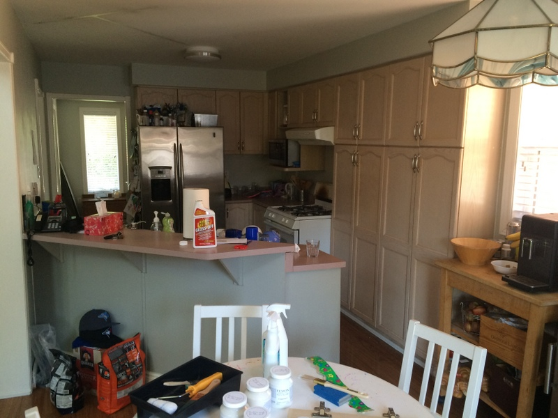 starting-the-process-of-painting-the-kitchen-cabinets