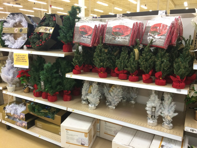 mini-christmas-trees-at-real-canadian-superstore