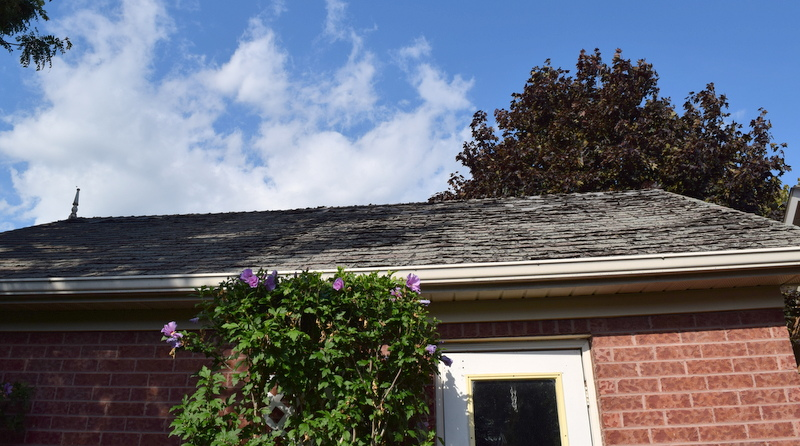 roof-before-in-terrible-condition
